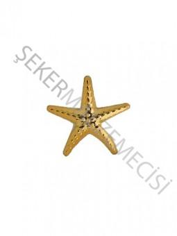Deniz Yıldızı Minik