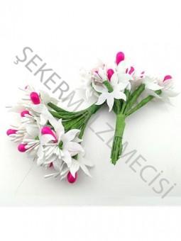 Çiçek Cipsolu ve Tomurcuklu Fuşya