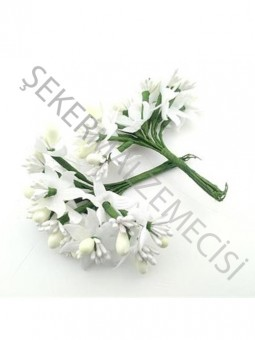 Çiçek Cipsolu ve Tomurcuklu Krem