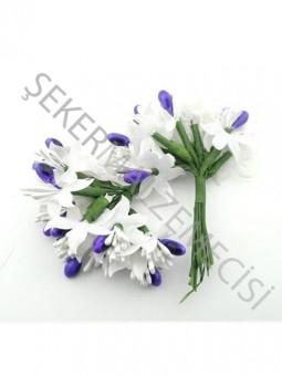Çiçek Cipsolu ve Tomurcuklu Mor