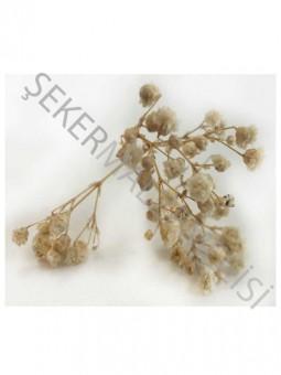 Çiçek Doğal Cipso Naturel 50 gram