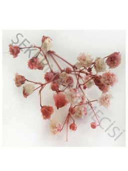Çiçek Doğal Cipso Kırmızı 50 gram