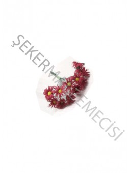 Papatya Çiçek Kırmızı